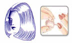 Beauty Salon Visit